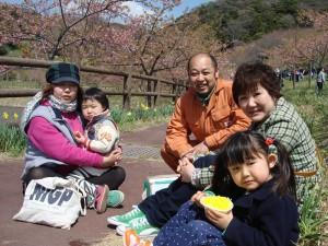 佐久間ダム 桜祭り