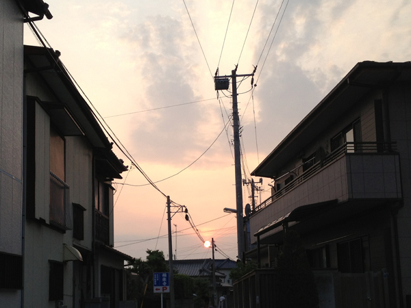 IMG_5255_1